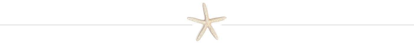 starfishdivider